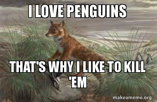 i-love-penguins-ygah85