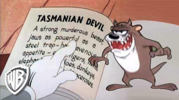 tasmaniandevil2
