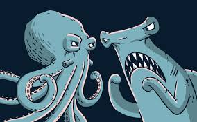 octopus vs. shark