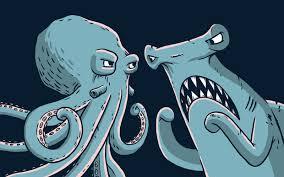 octopus vs. shark