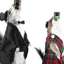 brewdogbeer.jpg