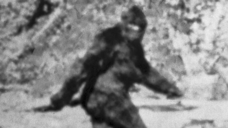 bigfoot-gettyimages-517258962.jpg