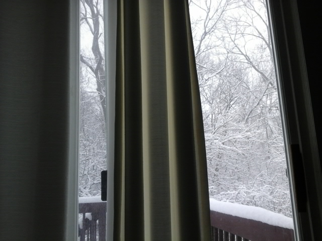 winterscenefeb262020